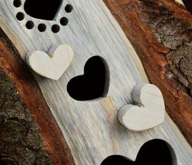 wood-3333863__340