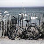 Hoja de ruta para un verano transformador_Julia de Miguel